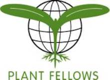 Plant_Fellows