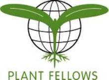 Plant_Fellows