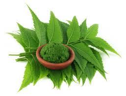 amla neem
